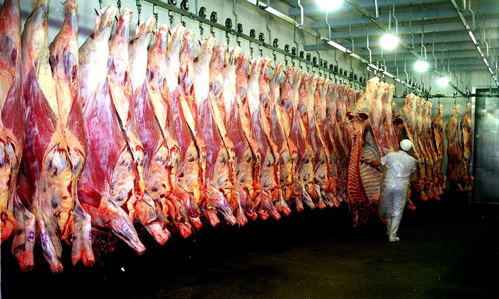 En números: el enorme gasto de agua que genera la producción de carne -  Noticias de Mendoza - Memo